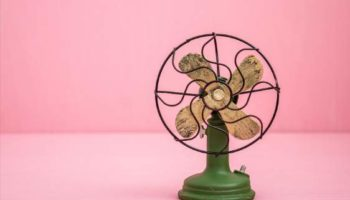 11 Best Pedestal Fan in India 2021-Reviews & Buying Guide