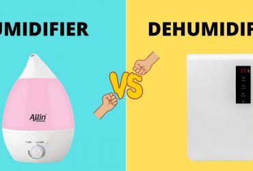 HUMIDIFIER VS DEHUMIDIFER